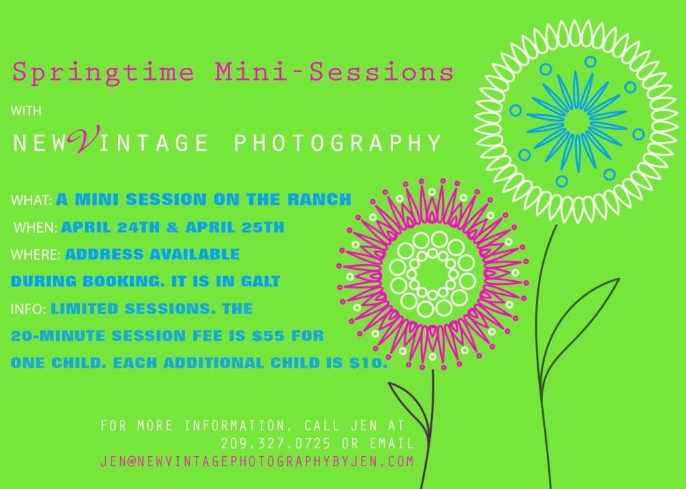 spring_mini_-session